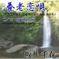坂井 千春 養老恋唄