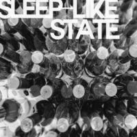 Hunnit sleep-like state