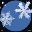 OVAN & VINXEN Snowflake