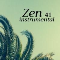 Boubacar Assad Zen instrumental 41: Sons de la nature pour la méditation et le yoga