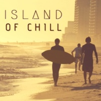 Brian Brain Island of Chill - 20 Relaxing Tracks
