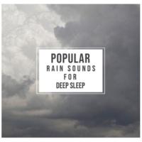 Regengeräusche, Rain Sounds & White Noise, Rain Sounds Collection 14 Spa Rain Tracks for Spa