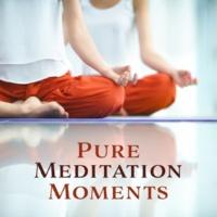 Meditation Music Masters Pure Meditation Moments