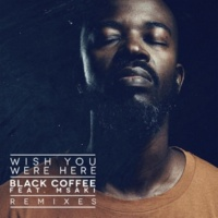 Black Coffee/Msaki Wish You Were Here (Remixes) (feat.Msaki)