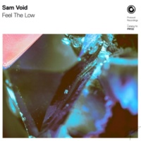 Sam Void Feel The Low