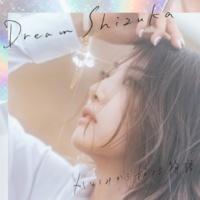 Dream Shizuka かなしみから始まる物語