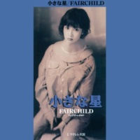 FAIRCHILD 小さな星