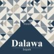 Bopek Dalawa Moon (Acoustic)