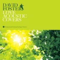 Super Natural DAVID FOSTER LOVE ACOUSTIC COVERS