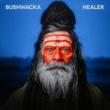 Bushwacka! Healer