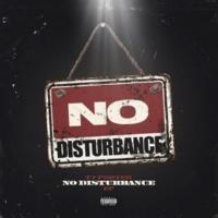 TJ Porter No Disturbance