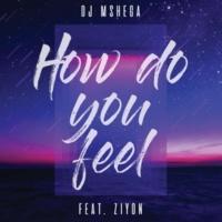 DJ Mshega/Ziyon How Do You Feel (feat.Ziyon)