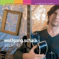 Wolfgang Schalk Space Messengers