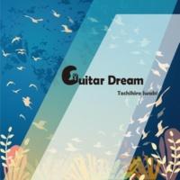 岩木俊宏 Guitar Dream