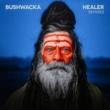 Bushwacka! Healer (Remixes)