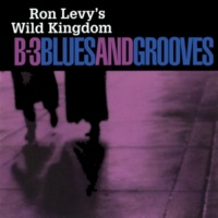 Ron Levy's Wild Kingdom B-3 Blues And Grooves