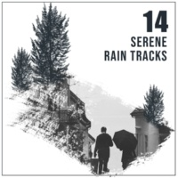 Sounds of Nature Relaxation, Nature Sound Series, Ambient Nature Project 14 Serene Rain Tracks for Guided Meditation