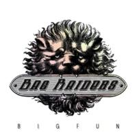 Bag Raiders Big Fun