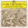 Sistine Chapel Choir/Massimo Palombella Palestrina: Audi benigne conditor