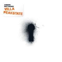 Anders Matthesen Villa Peakstate