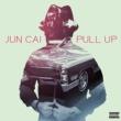 Jun Cai Pull Up