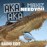 AKA AKA & Maxiz Need You