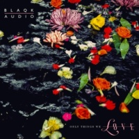 Blaqk Audio Caroline In the Clip