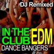 DJ Remixed Animals (DJ Remixed)