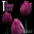 Yogsutra Relaxation Co & Ambient 11 & Serenity Calls & Sanct Devotional Club The Tender Tulips - Healing Tracks For Inner Peace