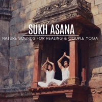 Yogsutra Relaxation Co & Ambient 11 & Trinity Meditationn Club & Serenity Calls & Liquid Ambiance Sukh Asana - Nature Sounds For Healing & Couple Yoga