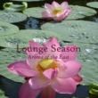 Argishty & F.Schubert Lounge Season Aroma Of The East