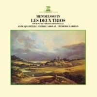 Anne Queffélec Piano Trio No. 1 in D Minor, Op. 49: III. Scherzo - Leggierro e vivace