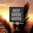 Miguel Serrano & Joe De Renzo & Cardillo DJ & Alex Patane' & Alex Raimondi & Simone Bica & Anthony Ray & Squeeze DJ & Abel Pons & Daniel Hecke Deep House Mania (School Of Deep House For DJ's)
