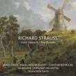クリストファー・ムーア/メルボルン・シンフォニー・オーケストラ/サー・アンドリュー・デイヴィス R. Strauss: Don Quixote, Op. 35, TrV 184 - 3. Sancho Panza [Live]