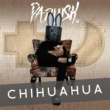 PADLUSH Chihuahua
