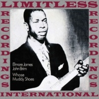 Elmore James & John Brim Whose Muddy Shoes