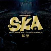 """東京スカパラダイスオーケストラ Are You Ready To Ska? (2018 Tour「SKANKING JAPAN」""""スカフェス in 城ホール"""" 2018.12.24)"""