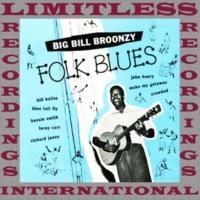 Big Bill Broonzy Folk Blues