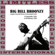 Big Bill Broonzy Rider Rider Blues