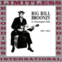 Big Bill Broonzy Too Too Train Blues