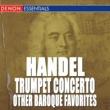 Camerata Rhenania/Hanspeter Gmur/Rolf Quinque/Rudolf Zartner Concerto for Trumpet, Strings and Basso Continuo in D Major: I. Allegro moderato (feat.Rolf Quinque/Rudolf Zartner)