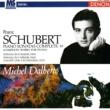 Michel Dalberto/Franz Schubert Sonata in F Minor, D. 625: I. Allegro