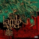 Lamb of God Another Nail For Your Coffin