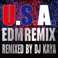 DA PUMP U.S.A.EDM Remix (Remixed by DJ KAYA)