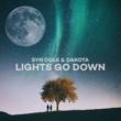 Syn Cole/Dakota Lights Go Down