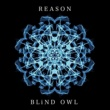 BLiND OWL REASON