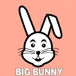 Bunny House & Rousing House & Big Bunny & 21 ROOM & Techno Red & Q-Green & Sergii Petrenko Hard Hook