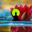 Liquid Ambiance & Sanct Devotional Club Healing With Meditation Spa