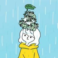 かなまる 雨でもいいよ