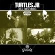 Turtles Jr
